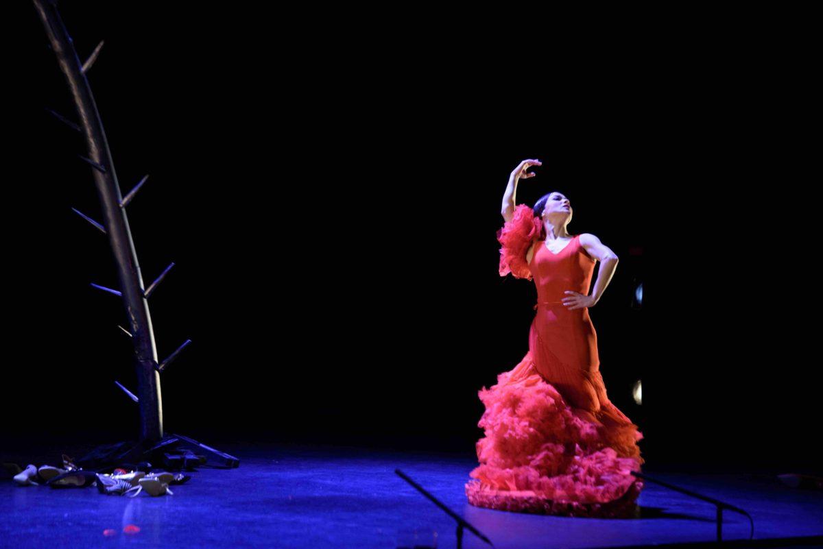 La-espina-que-quiso-ser-flor-Olga-Pericet © Paco Villalta