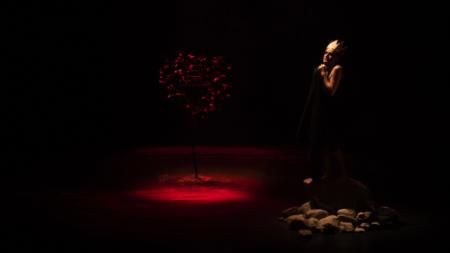 « Ma Colombine » de Fabrice Melquiot © Ariane Catton Balabeau